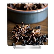 Pepper And Spice Shower Curtain by Anne Gilbert