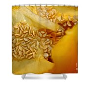 Pepper Reproduction Shower Curtain