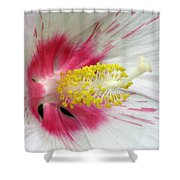 Peppermint Flame 01 Shower Curtain