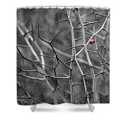 Per Aspera - Featured 3 Shower Curtain
