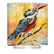 Perched Kingfisher Shower Curtain