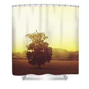 Perched On Top Shower Curtain