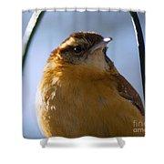 Perched Portrait Shower Curtain