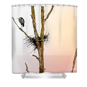 Perched Up High Shower Curtain