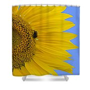 Perfect Half With Blue Sky Shower Curtain