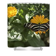 Perfect Landing Shower Curtain