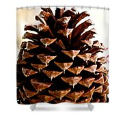 Perfect Pinecone Shower Curtain