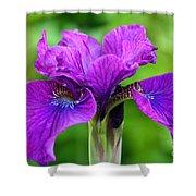 Perfect Purple Specimen Shower Curtain