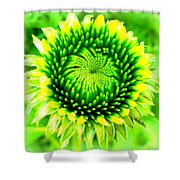 Perfect Symmetry Shower Curtain