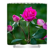 Perfectly Pink 2 Shower Curtain