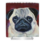 Perfectly Pug Shower Curtain