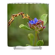 Perfectly Wonderous Flowerland Shower Curtain