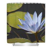 Periwinkle Lily Shower Curtain