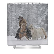 Persevere Through All Shower Curtain by Diane Bohna