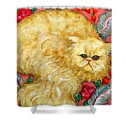 Persian Cat On A Cushion Shower Curtain