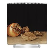 Persimmon Shower Curtain