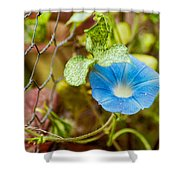 Persuasive Blue Shower Curtain