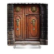 Peruvian Door Decor 10 Shower Curtain