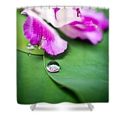 Peruvian Lily Raindrop Shower Curtain
