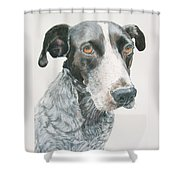 Pet Portrait Dog Art Print Hire Commission Pet Portrait Artist Shower Curtain