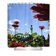Petal Nation Shower Curtain