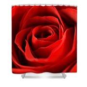 Petal Of Honor Shower Curtain