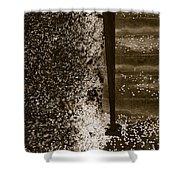 Petal Snow Shower Curtain