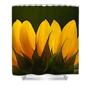 Petales De Soleil - A01 Shower Curtain