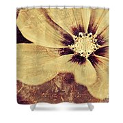 Petaline - T37d03a3 Shower Curtain