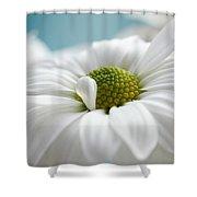 Petal Cloud Shower Curtain
