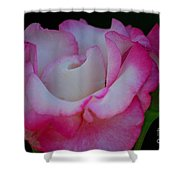 Petals Abstract Shower Curtain