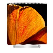 Petals And Sun Shower Curtain