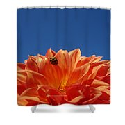 Petals For A Lady Shower Curtain