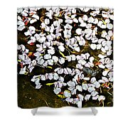Petals In The Pond Shower Curtain