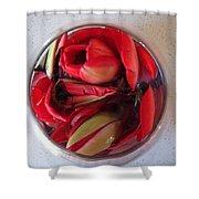 Petals In Vase  Shower Curtain