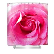 Petals Of Beauty Shower Curtain