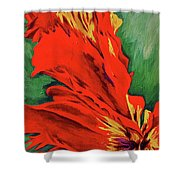 Petals Of Fire Two Shower Curtain