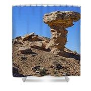 Petrified Camel Shower Curtain