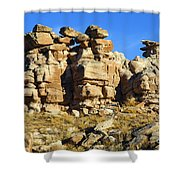 Petrified Forest Rock Formations Shower Curtain