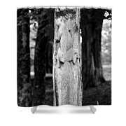 Petrified In Time Shower Curtain