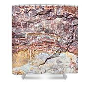 Petrified Rings Shower Curtain