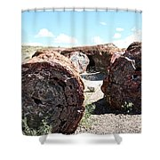 Petrified Timber Shower Curtain