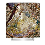 Petrified Wood In Crystal Forest In  Petrified Forest National Park-arizona Shower Curtain