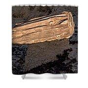 Petrified Wood On A Pedestal Shower Curtain