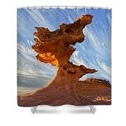 Petrifin Shower Curtain