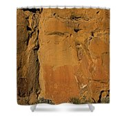 Petroglyphs   #1054 Shower Curtain