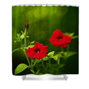 Petunia Dreams In The Woods Shower Curtain