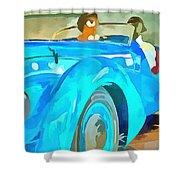 Peugeot Darl'mat Shower Curtain