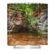 Pewits Nest Shower Curtain