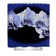 Phalaenopsis 2 Shower Curtain